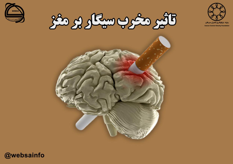 تاثیر مخرب سیگار بر مغز