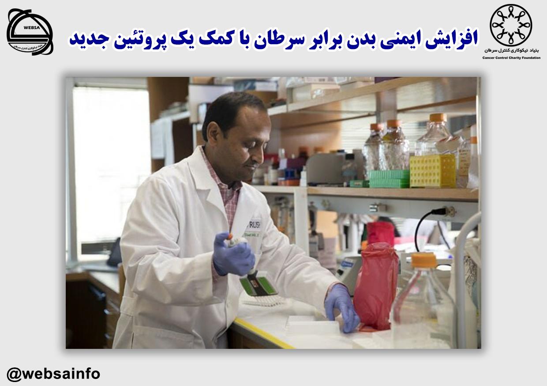 افزایش ایمنی بدن برابر سرطان با کمک یک پروتئین جدید