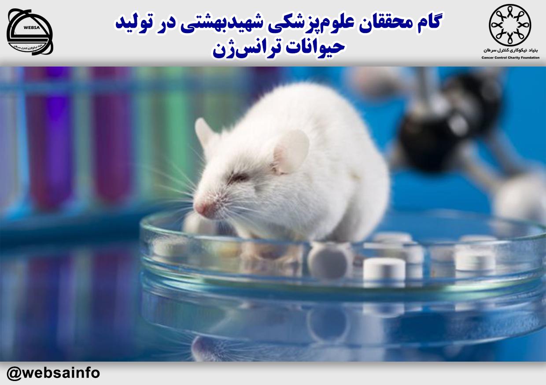 گام محققان علومپزشکی شهیدبهشتی در تولید حیوانات ترانسژن