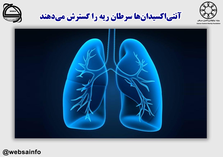 آنتیاکسیدانها سرطان ریه را گسترش میدهند