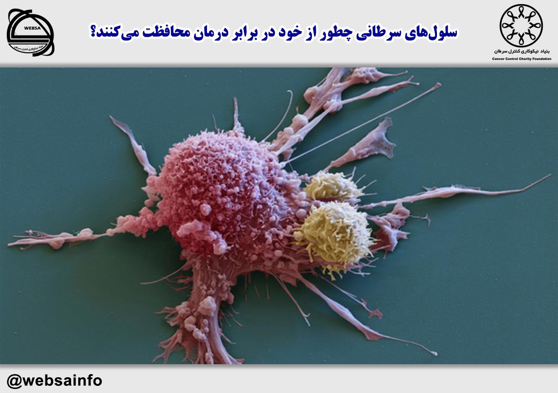 سلولهای سرطانی چطور از خود در برابر درمان محافظت میکنند؟