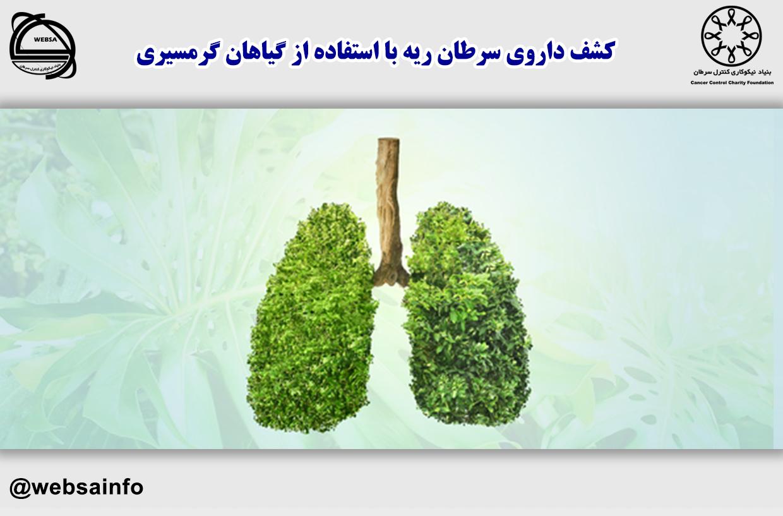 کشف داروی سرطان ریه با استفاده از گیاهان گرمسیری