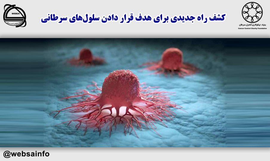 کشف راه جدیدی برای هدف قرار دادن سلولهای سرطانی